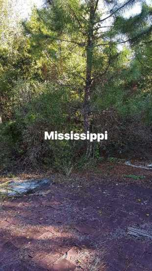 Half mile to the beach WAVELAND, MS $200 a month
